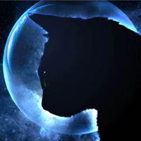 SarahJohnson-62442's Avatar